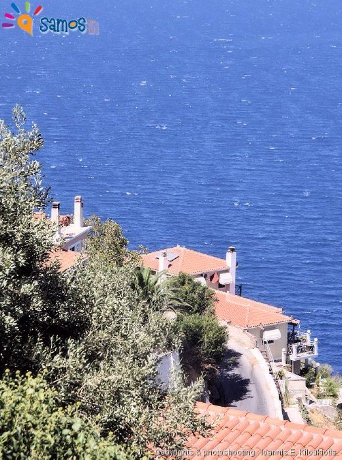Άμπελος μπαλκόνι στο Αιγαίο