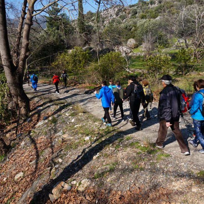 Hiking from Kokkari to Platanakia via Vourliotes Manolates