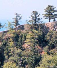 Genoan Castle