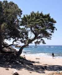 Beach Kedros at Plaka