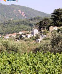 Konteika village