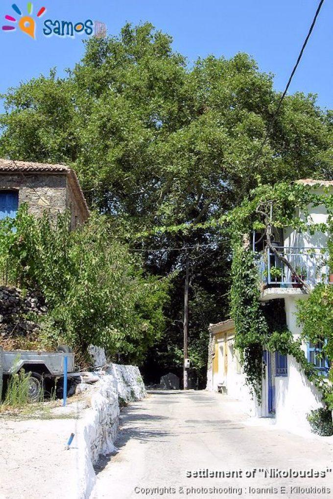 Κοσμαδαίοι, γειτονιά του χωριού