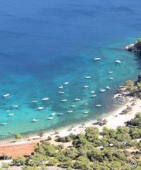 Beach Mourtia