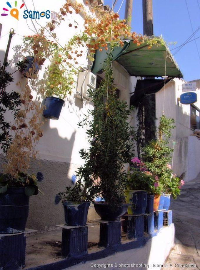 Παλαιόκαστρο γειτονιά του χωριού