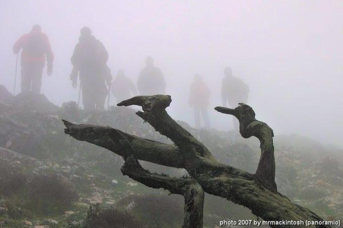 Διαδρομή με ομίχλη, προς το ξωκλήσι