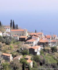Stavrinides village