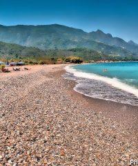 Beach Svala
