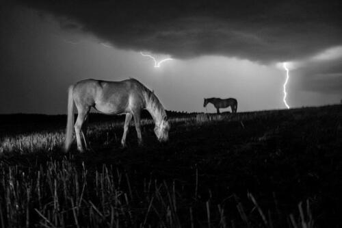 φωτογραφία Σταύρου Σταματίου